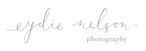 Twin Cities Newborn Photographer | Eydie Nelson Photography logo